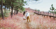 <b>Marriage Counseling--Seven Tips to Live Longer</b>