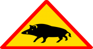 <b>How can I become a wild boar hunter?</b>